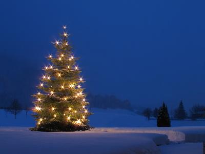 leuchtender Weihnachtsbaum